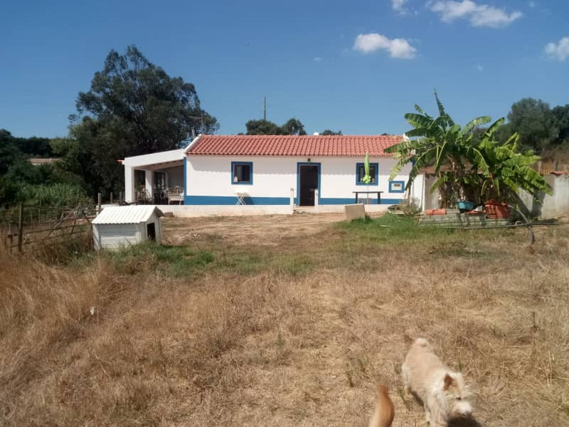 Housesitting assignment in Odemira, Portugal