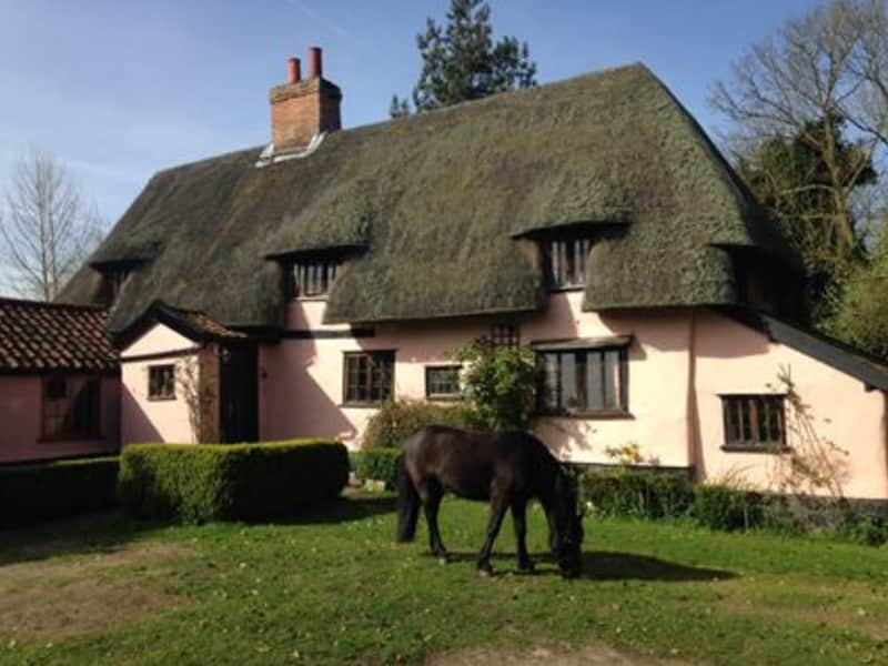 Housesitting assignment in Diss, United Kingdom