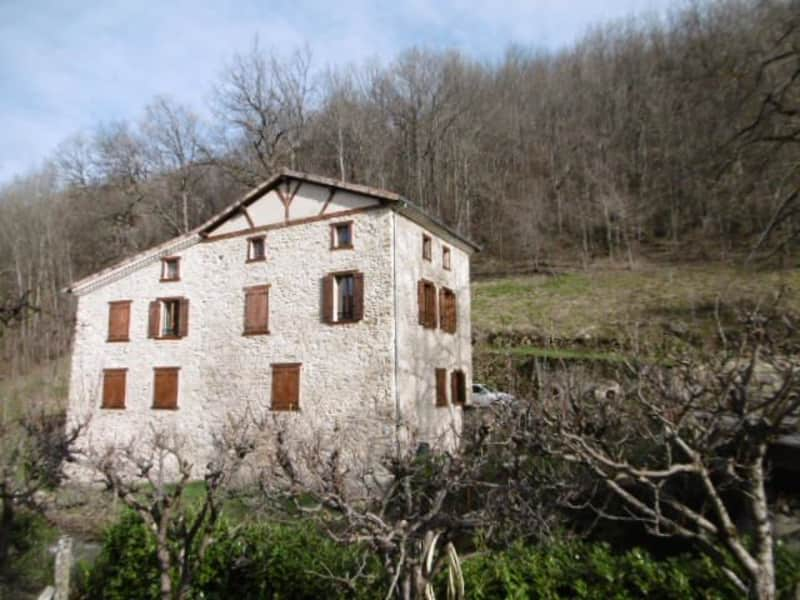 Housesitting assignment in Foix, France