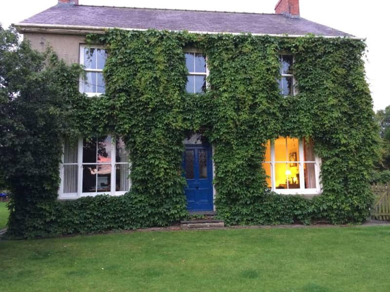 Housesitting assignment in Lampeter, United Kingdom
