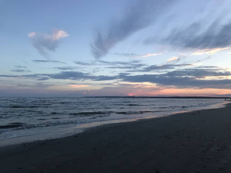 Housesitting assignment in Saint Simons Island, Georgia, United States