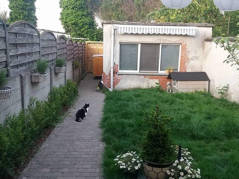 Housesitting assignment in Waarloos, Belgium