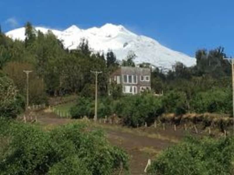 Housesitting assignment in Puerto Varas, Chile