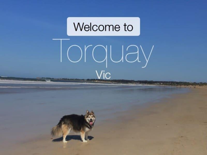 Housesitting assignment in Torquay, Victoria, Australia