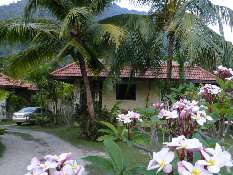 Housesitting assignment in Patong, Thailand