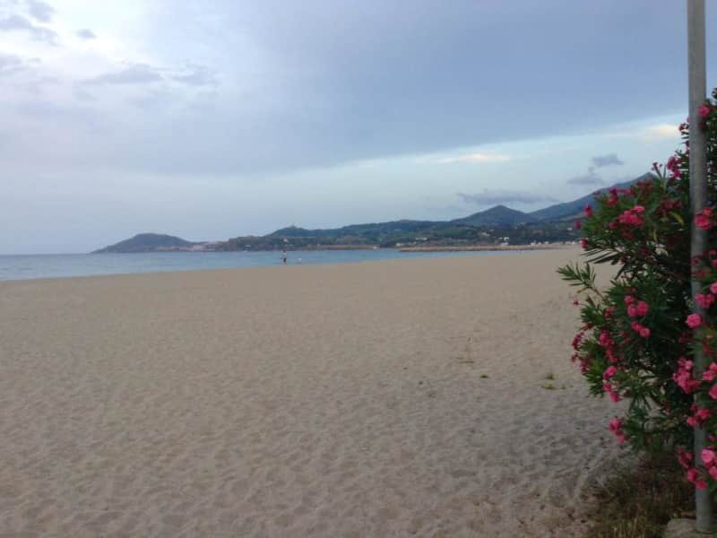 Housesitting assignment in Collioure, France