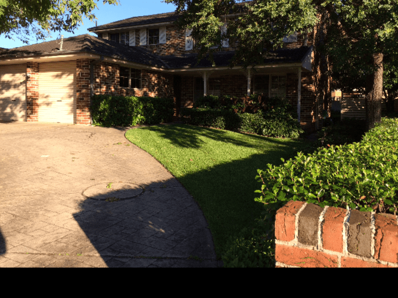 Housesitting assignment in Marsfield, New South Wales, Australia