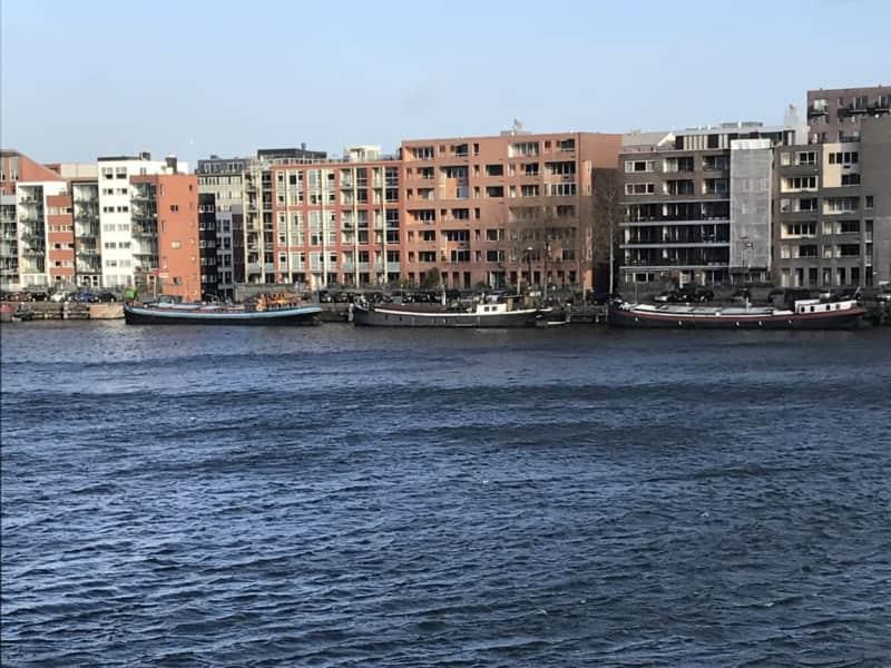 Housesitting assignment in Amsterdam, Netherlands