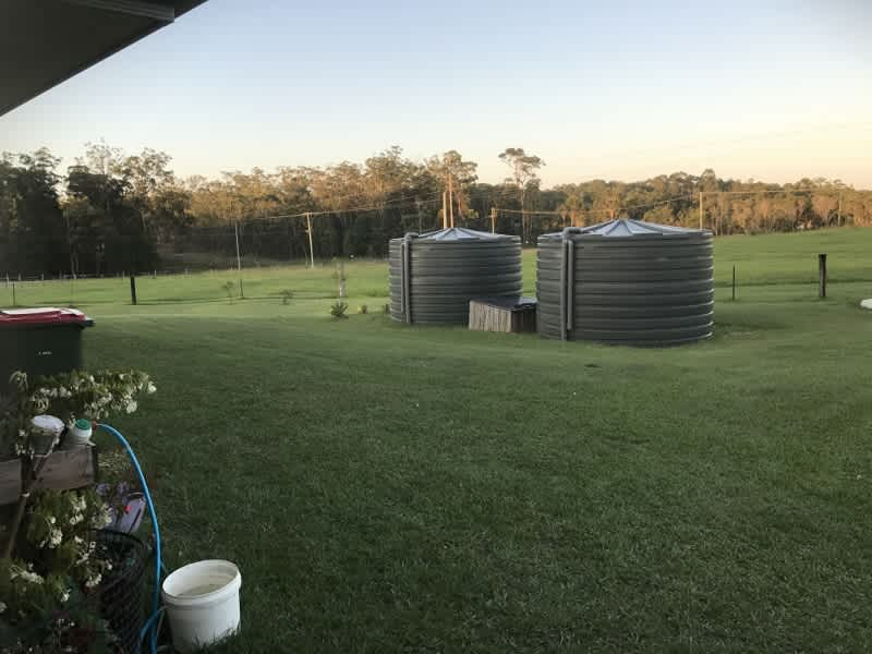 Housesitting assignment in Lanitza, New South Wales, Australia