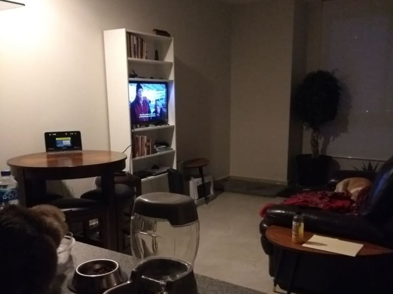 Housesitting assignment in Polanco, Mexico