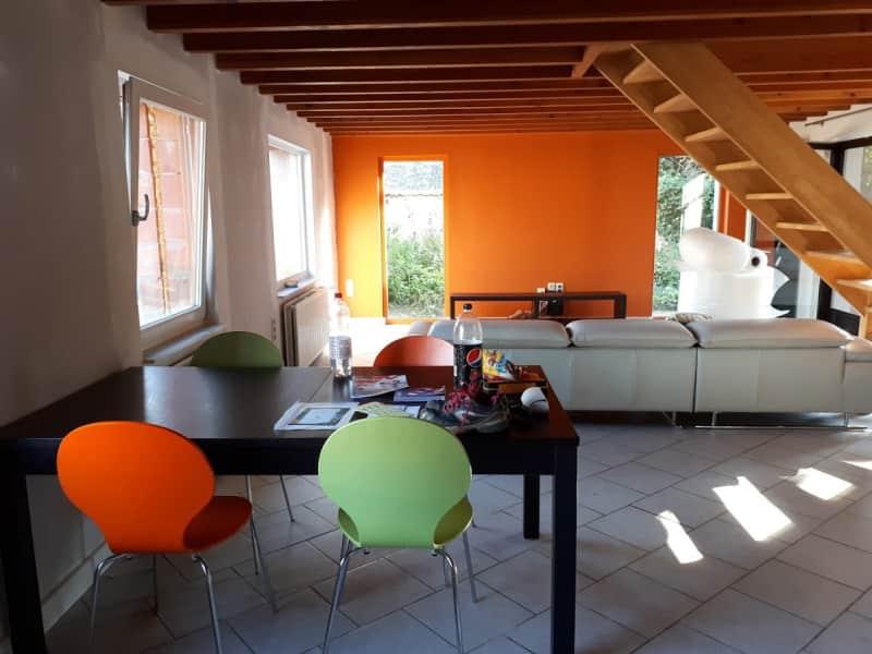 Housesitting assignment in Kruishoutem, Belgium