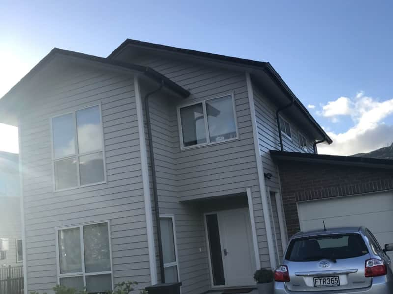 Housesitting assignment in Silverstream, New Zealand