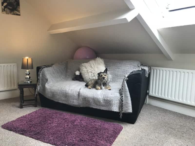 Housesitting assignment in Kegworth, United Kingdom
