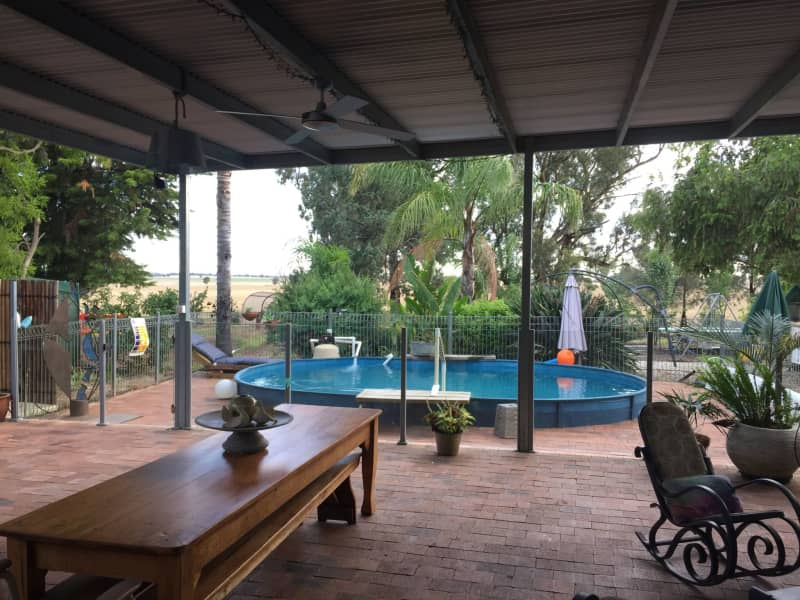 Housesitting assignment in Lockhart, New South Wales, Australia