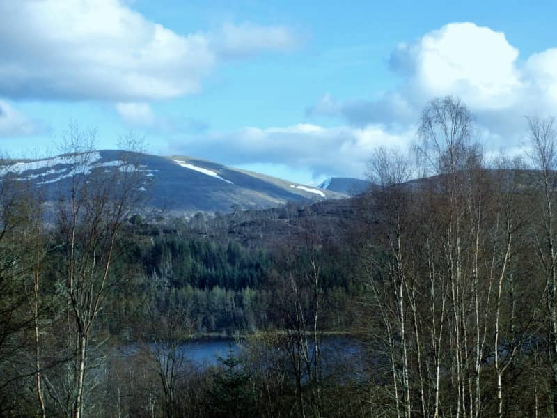 Housesitting assignment in Invergarry, United Kingdom