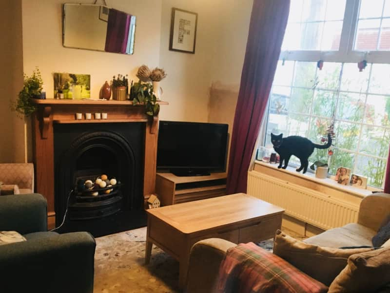 Housesitting assignment in Portslade, United Kingdom