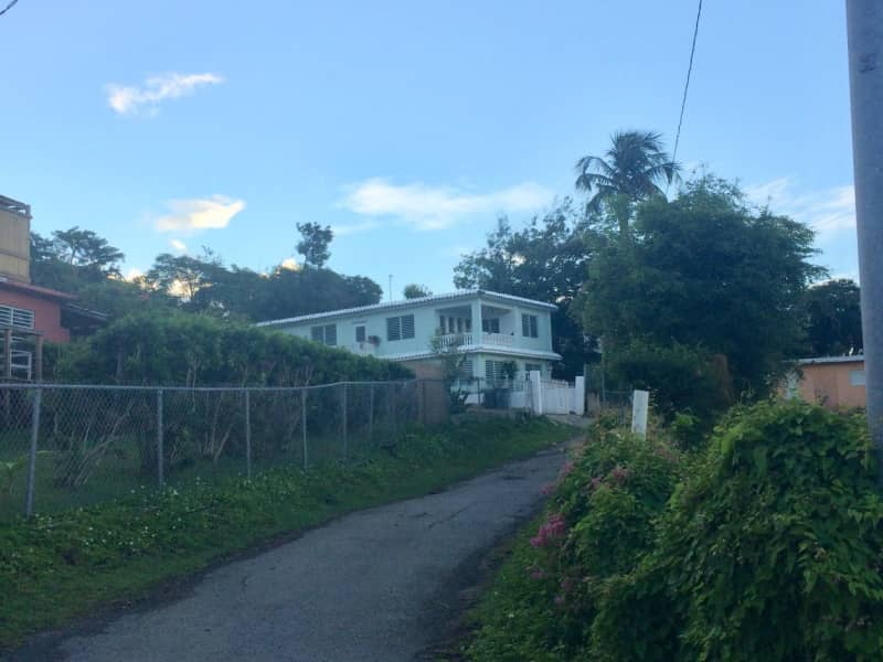 Housesitting assignment in Vieques, Puerto Rico