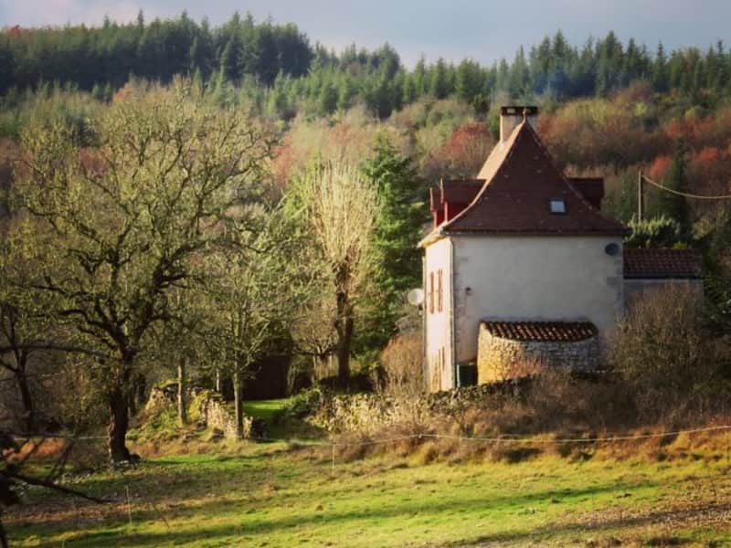 Housesitting assignment in Cabrerets, France