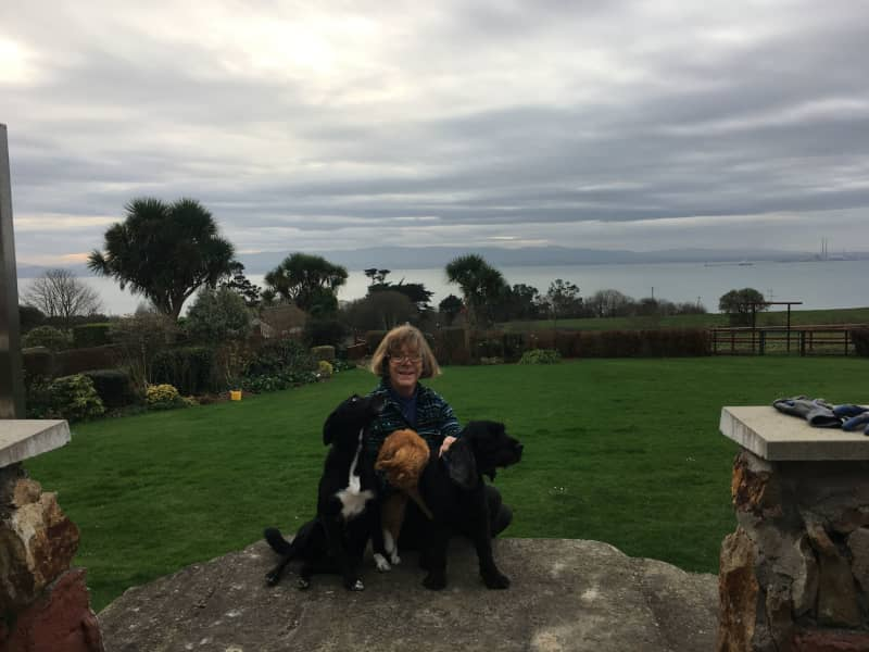 Housesitting assignment in Howth, Ireland