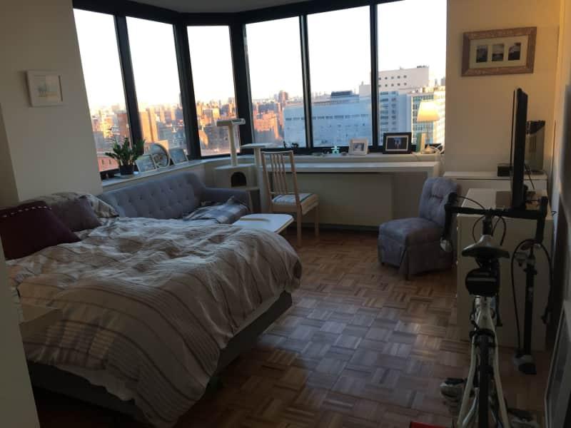 Housesitting assignment in Manhattan, New York, United States