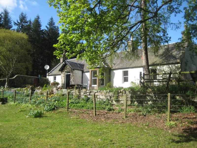 Housesitting assignment in Kirriemuir, United Kingdom