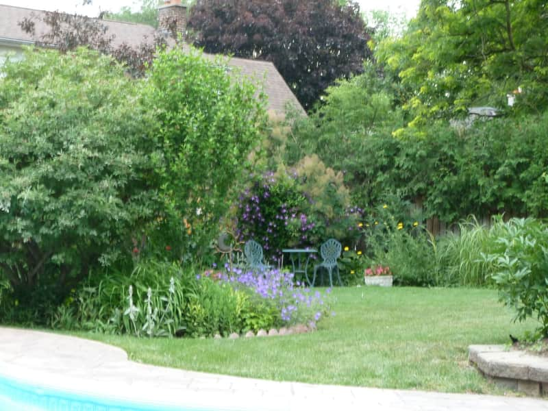 Housesitting assignment in Thornhill, Ontario, Canada