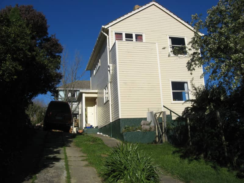 Housesitting assignment in Dunedin, New Zealand
