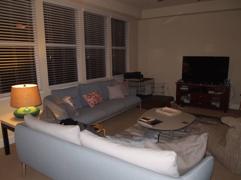 Housesitting assignment in Napa, California, United States
