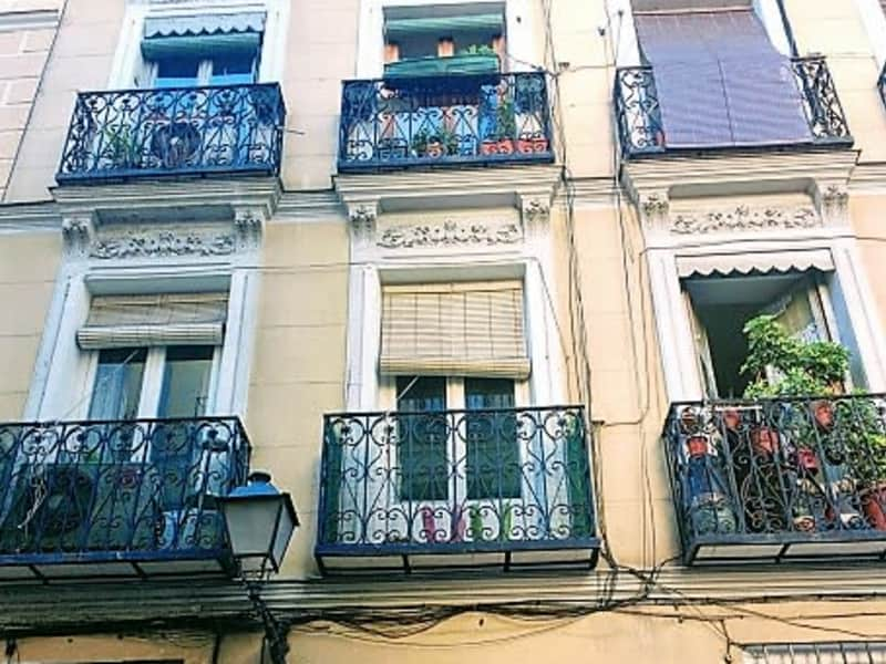 Housesitting assignment in Madrid, Spain