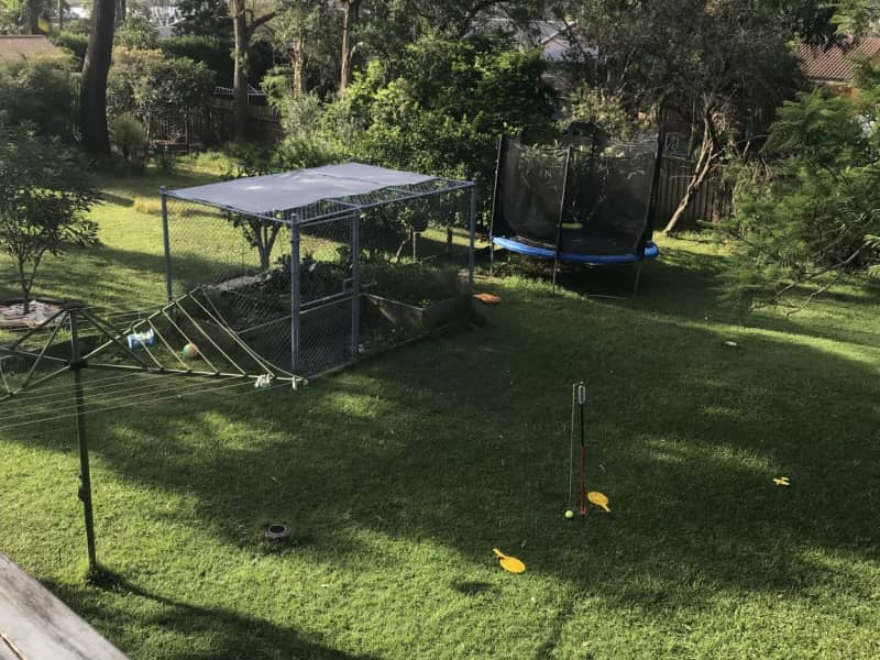 Housesitting assignment in Empire Bay, New South Wales, Australia