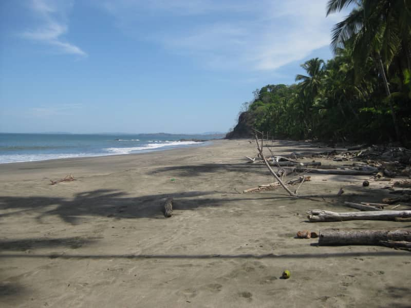 Housesitting assignment in Morrillo, Panama