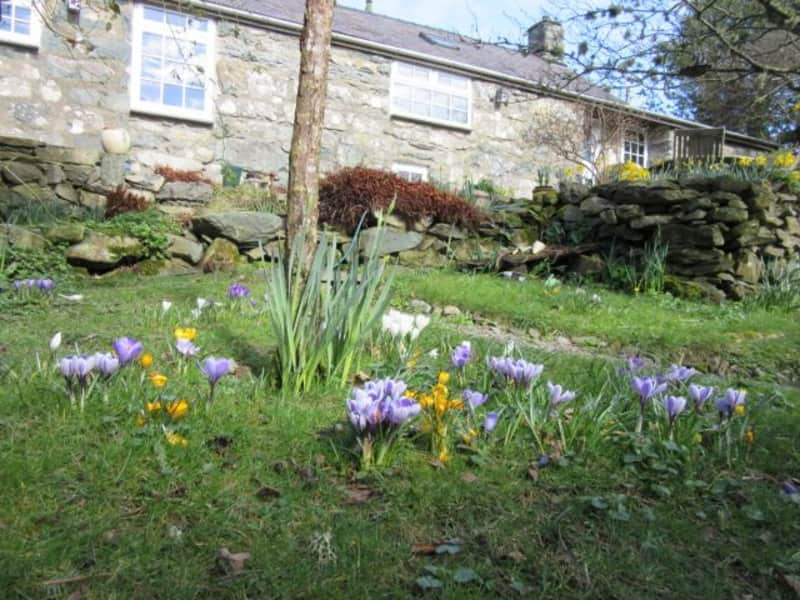 Housesitting assignment in Llanfachreth, United Kingdom
