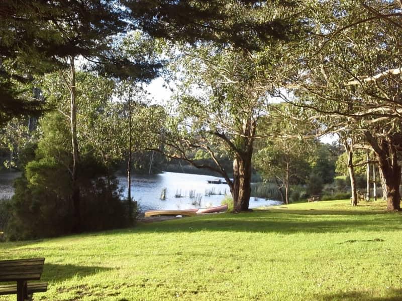 Housesitting assignment in Main Ridge, Victoria, Australia