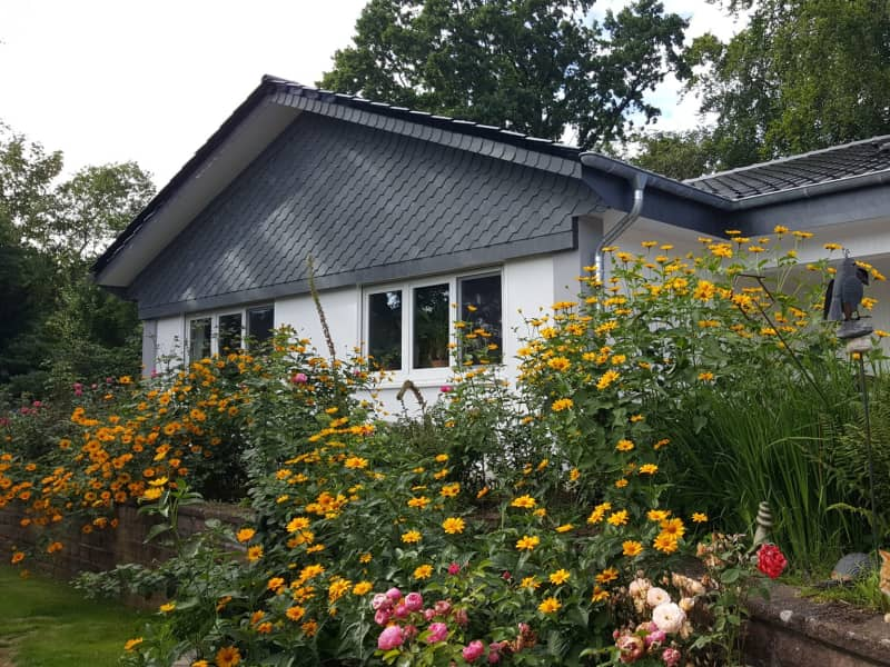 Housesitting assignment in Buchholz in der Nordheide, Germany