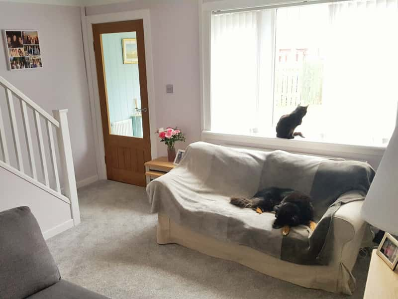 Housesitting assignment in Johnstone, United Kingdom
