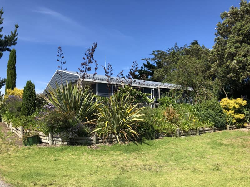 Housesitting assignment in Himatangi, New Zealand