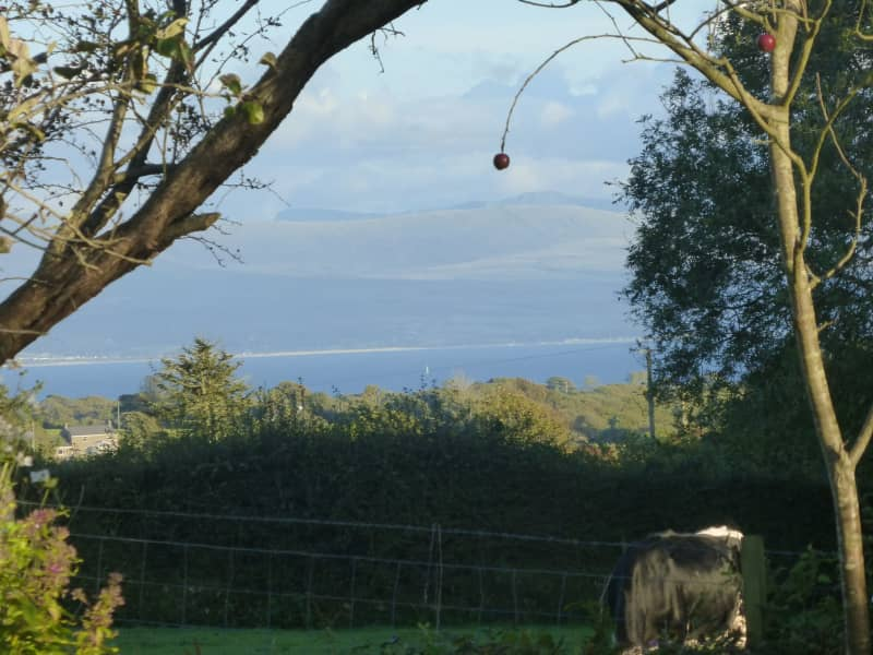 Housesitting assignment in Pwllheli, United Kingdom