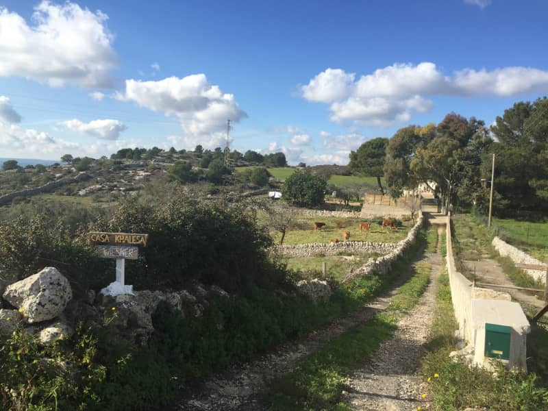 Housesitting assignment in Noto, Italy