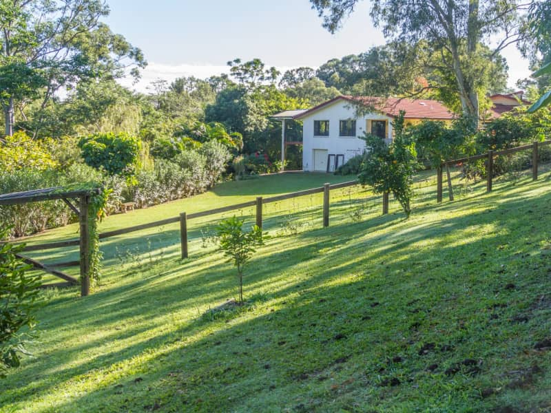 Housesitting assignment in Buderim, Queensland, Australia