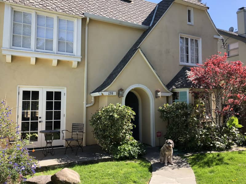 Housesitting assignment in Berkeley, California, United States
