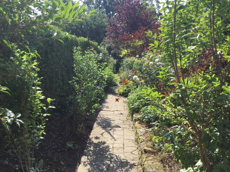 Housesitting assignment in Esher, United Kingdom