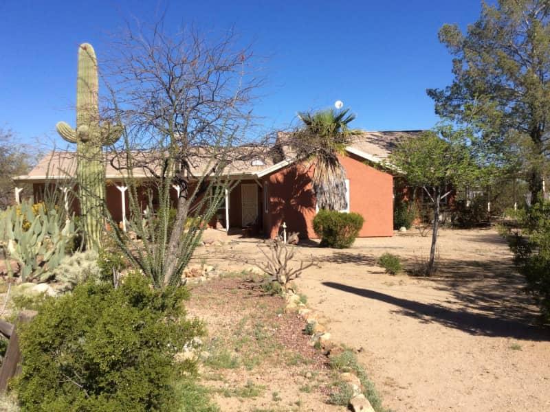 Housesitting assignment in Tucson, Arizona, United States