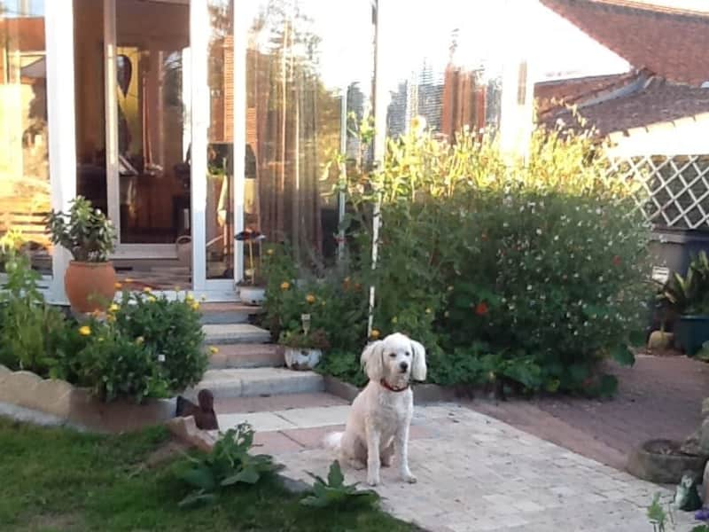 Housesitting assignment in La Roche-sur-Yon, France