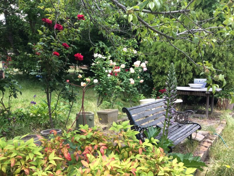 Housesitting assignment in Gemalla, New South Wales, Australia