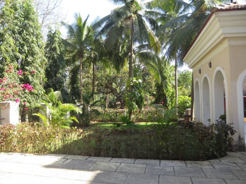 Housesitting assignment in Goa Velha, India