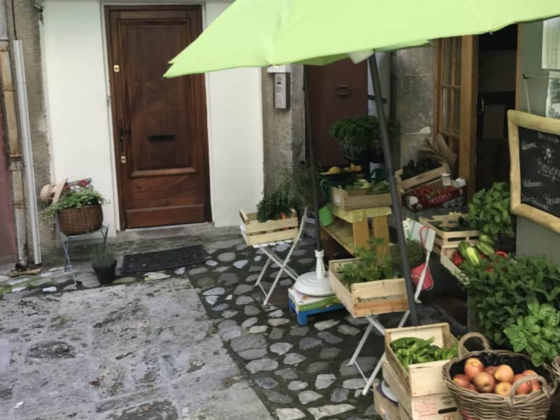 Housesitting assignment in Entrevaux, France