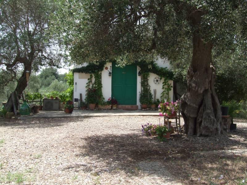Housesitting assignment in Montalbano Jonico, Italy