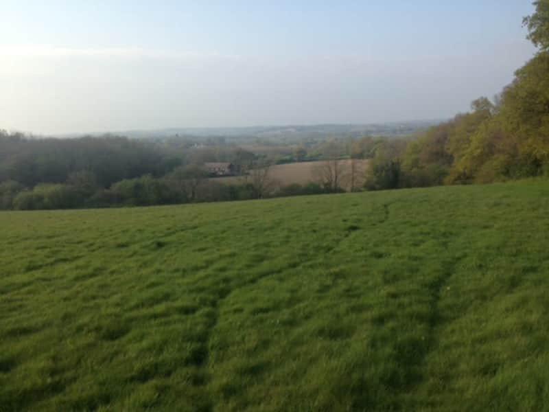 Housesitting assignment in Etchingham, United Kingdom