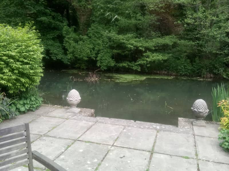 Housesitting assignment in Dursley, United Kingdom
