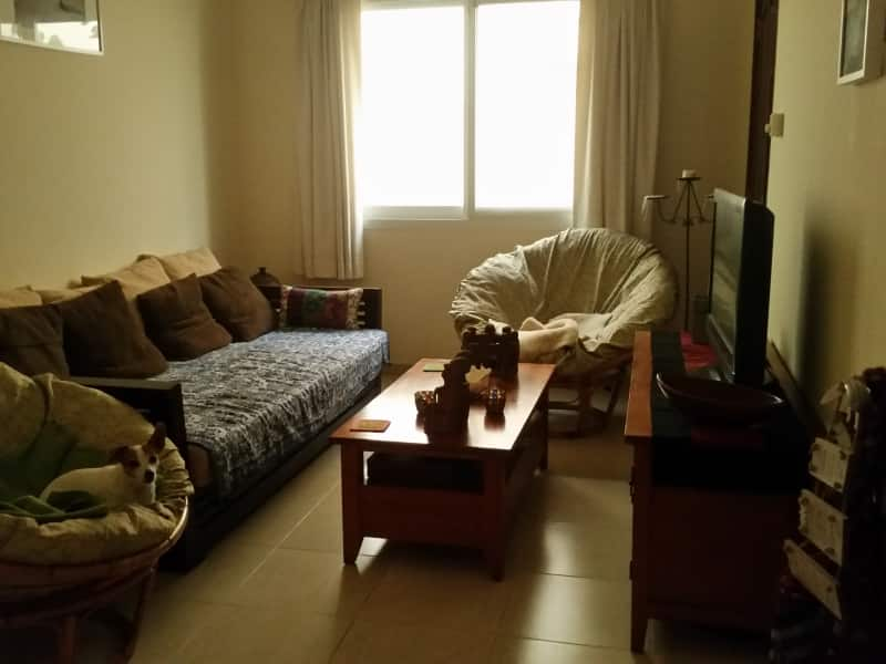 Housesitting assignment in Kalbā, United Arab Emirates